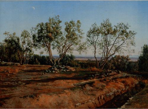 Оливы у кладбища в Альбано