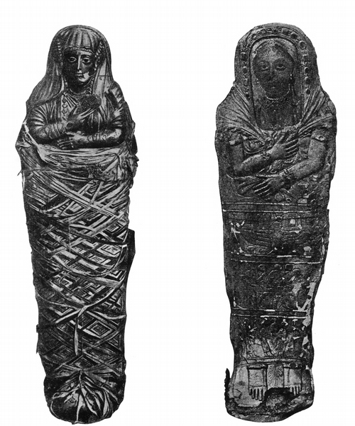Мумия Самбатион. № 33X26. Каирский мувей и Мумия. № 33216. Каирский мувей
