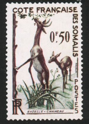 Сомали Французское. 1958. № 289. Животный мир. 50 сантимов. Газель, так называемая газель-жираф. Рис. Ш. Мазлена (Mazelin). Коричнево-лиловая и зеленая. Гравюра на металле. Зуб. 13.