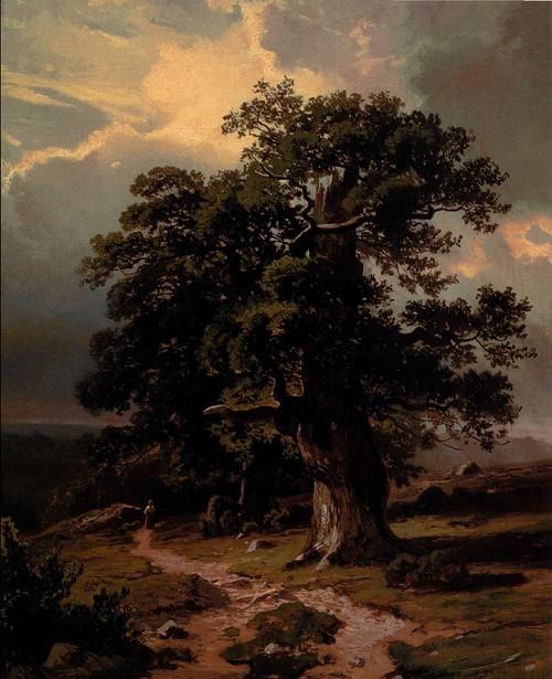 Дубы. Эскиз для картины «Вид в ок р естностя х Дюссельдорфа ». 1865