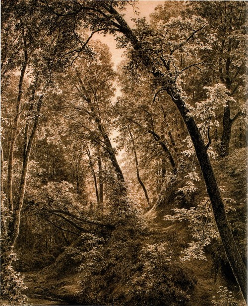 На ручье . 1895
