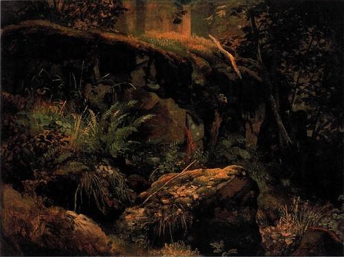 Камни в лесу. Валаам . Этюд. 1858-1860