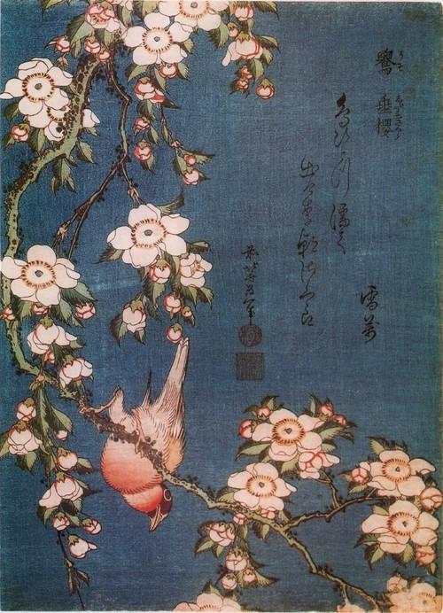 Сакура и снегирь. Около 1834 Из серии Малые цветы