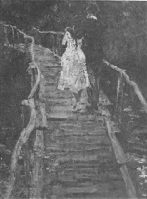 А. Ткачев, С. Ткачев. С вечеринки. Масло. 1956.