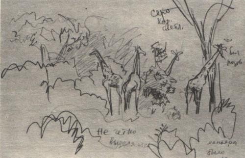 В. Муцетони. Жирафы. Карандаш. 1977.