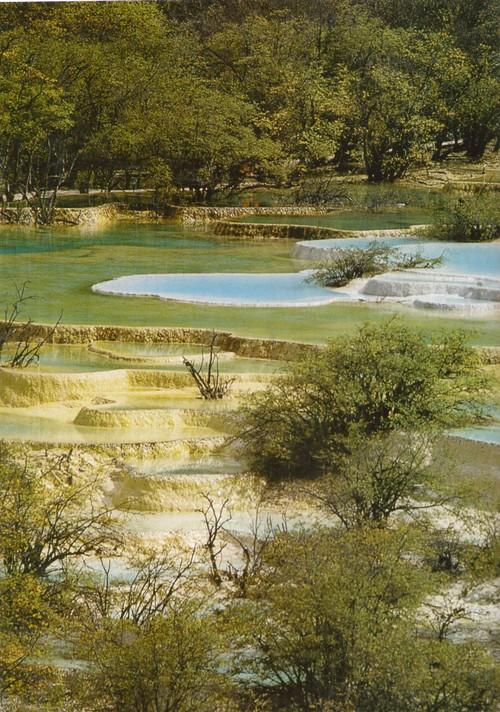 Хуанлун. Подобные водоемы образуются там, где богатая известью вода просачивается через скалистые пороги. Вода теряет угле-кислоту и поэтому выделяет растворенный карбонат кальция. За счет этого берега озер постепенно становятся выше.