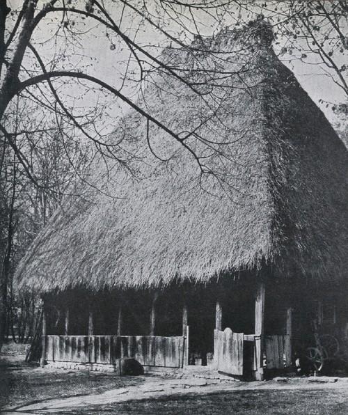 Село Сэлчиуа